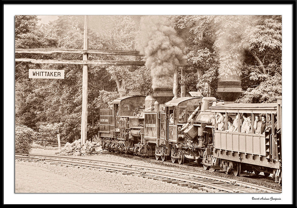 Arriving at Wittaker Station, the trains stop for a break.  Wittaker Station is a logging camp.