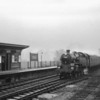 A wet dismal 19th December 64 sees Brighton's 80089 arriving at Gomshall & Shere with the 11 05 Reading Southern to Tonbridge. She was transferred to Nine Elms until her withdrawal in October 66.