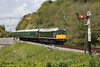 25035 Corfe Castle 9th May 2015