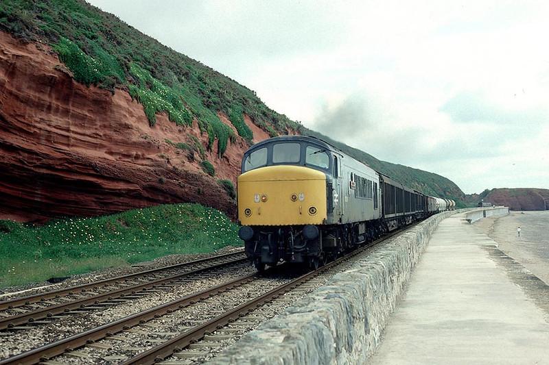 45006 Dawlish on 0810 Tiverton Jn-St.Blazey 1st July 1985