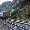 46010 Teignmouth  23 Aug 78