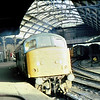 46029 Newcastle  16 Nov 80