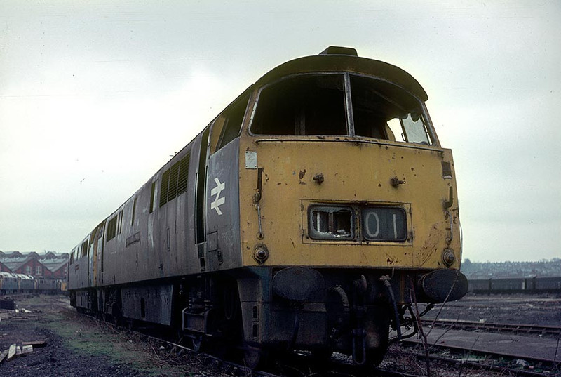 D1001/D1054 Swindon Works 5th March 1977