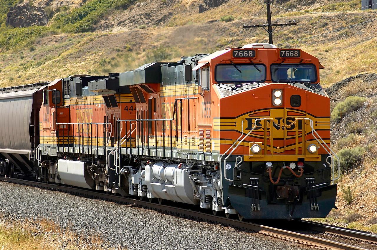 Brand new GEVO ES44DC leads empty grain train near Avery, WA.