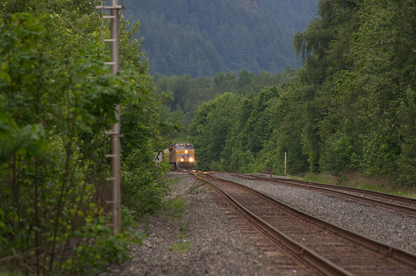 Gorge Trains May 2014