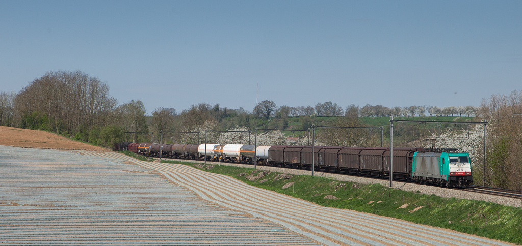 2816 bringing the 44543 (Antwerpen-Noord - Gremberg/D) past a field of plastic in Wonck.