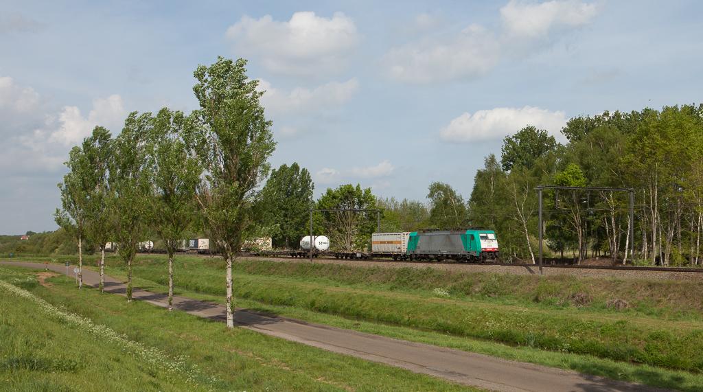 2814 leads the 40291 (Antwerpen-Combinant - Gallarate/I) in Schulensmeer.