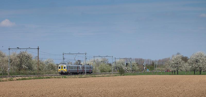 Belgian AM70 613 running Maastricht - Liege/B in Oost Marland.