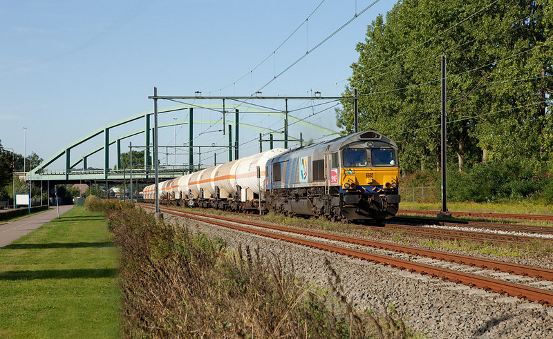 SNCF Fret Benelux 6603 leads the empty CO2 train 48648 (Lyon St. Priest/F  - Lutterade) through Beek-Elsloo northbound.
