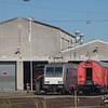 Rheincargo diesel-Traxx DE801 in Brühl-Vochem.