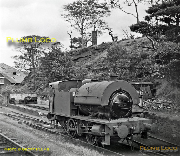 47007, Sheep Pasture, 12th August 1962