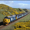 2017 04 24 37402 at Nethertown with the gorse almost in full bloom.