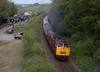 A solitary head pokes from a train window as D1015 leaves Okehampton for Meldon Quarry over track that existed when this was still a through main line between London and Plymouth; perhaps one day it will be again! 7/5/16