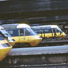 253033, 253009, 253013 & 253024 Paddington  8 Aug 81