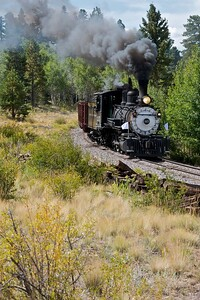 Steaming through the Aspen Trees east of Sublette