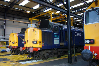 37038, 37608 and 20310.
