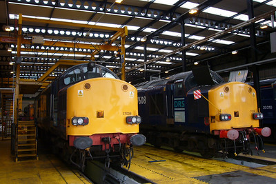 37038 and 37608 undergoing exams in the shed.