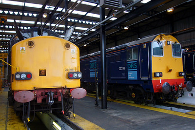 37608 and 20310 Gresty Bridge in the shed.