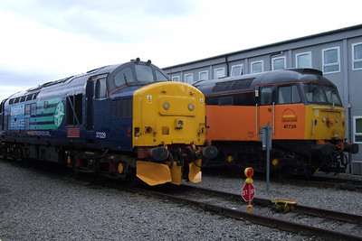 37229 and 47739, 11/07/09.