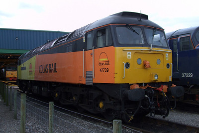 47739 Robin of Templecombe, 11/07/09.