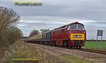 "D1015 ""Western Champion"", Charndon, 1Z52, 14th December 2013"