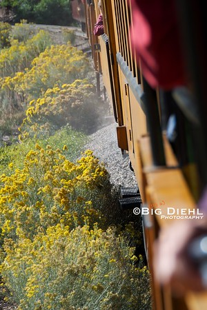 """HOTBOX!   Most, if not all, of the Durango and Silverton's railroad equipment uses Plain Bearings (or """"Friction Bearing"""").  Today, one of these bearings has overheated, resulting in a hotbox on one of the coaches, and the car will be set out at Rockwood."""