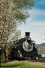 Southbound train travels through the downtown area of Durango. April 2012