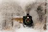 Durango Winter Train at Christmas
