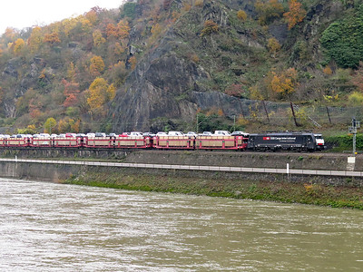SBB Cargo 189 982 (ES 64 F4-082) heads a southbound train of cars along the bank of the Rhine. Thursday 20th November 2014.