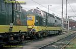 """BR Eastern Region Class 55 """"Deltic"""" Co-Co diesels Nos. D9016 (55016) """"Gordon Highlander"""" & D9000 (55022) """"Royal Scots Grey"""" stabled at Bounds Green TMD, Wood Green. Saturday 19th April 1997. Photo taken during an official visit. Slide No. 25934."""