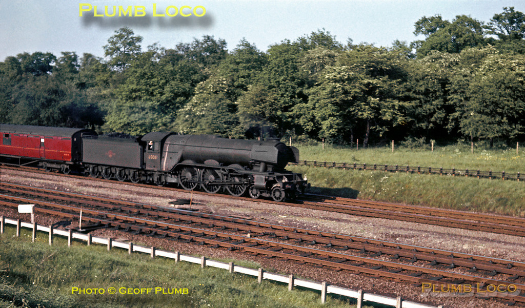 "LNER A3 Class 4-6-2 No. 60061 ""Pretty Polly"" approaches Hadley North Tunnel with an up express to King's Cross during the last week of regular steam haulage south of Peterborough, after which all trains were diesel hauled, apart from ""one-offs"" and specials. Saturday 1st June 1963. Slide No. 77. A small hut between the lines has been digitally removed from this shot!"