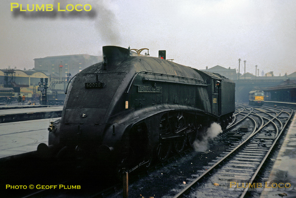 """From the Geoff Plumb Collection of original slides. LNER A4 4-6-2 No. 60028 """"Walter K. Whigham"""" backs out of King's Cross after arriving with an up express, it is now on its way to """"Top Shed"""" for servicing on a very miserable Saturday 3rd November 1962. Photo by Mike Burnett."""