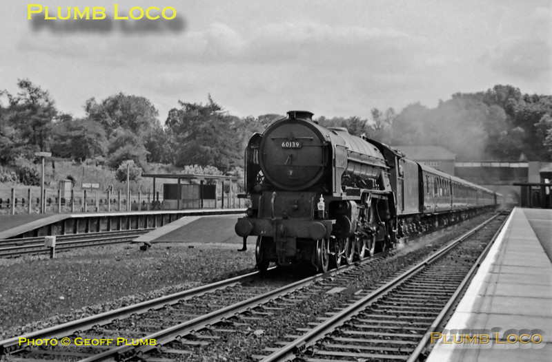 """Peppercorn A1 Class 4-6-2 No. 60139 """"Sea Eagle"""" roars through Hadley Wood station with a northbound express from King's Cross on Saturday 4th August 1962. The engine is allocated to 36A, Doncaster MPD. B&W Neg No. 114."""