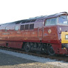 D1015 Western Champion - Eastleigh Works - 24 May 2009