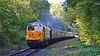 50044 'Exeter' 14:50 Bridgnorth to Kidderminster at Country Park Halt 4/10/18.