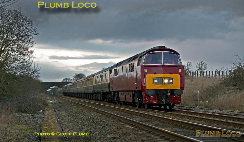 "D1015 ""Western Champion"", Ardley Quarry, 1Z54, 9th February 2014"