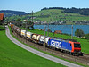 482016 Seen near Immensee on a southbound freight for the Gotthard route and Italy<br /> 01/09/2010