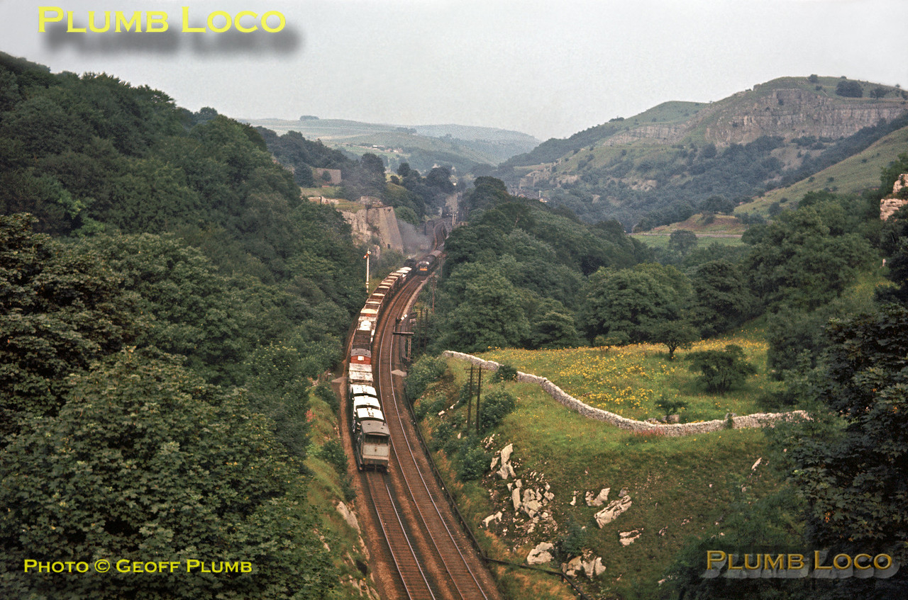 4F 0-6-0 & Peak diesel passing near Milers Dale, 2nd August 1963