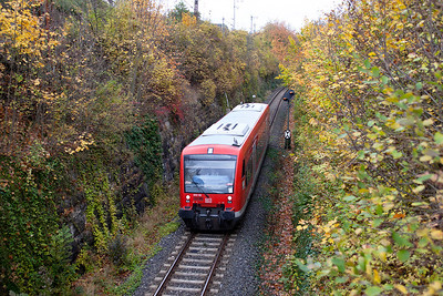 650 101 heads through the autumn colours in the cutting below the Golden Ox brewery with branch service from Langenau to Laupheim Stadt via Ulm. 26th October 2009.