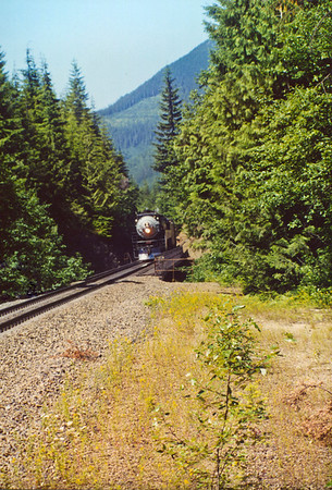 Southern Pacific 4449 ascending Stevens Pass eastbound at Deception Creek.