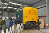 "Deltic 55019 ""Royal Highland Fusilier"" is seen inside the DPS workshop at Barrow Hill 02/02/2013."