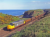 Recently overhauled and repainted in red-stripe Railfreight livery, 37518 is climbing away from Berwick along the Berwickshire clifftops with a load of steel pipes from Hartlepool Pipe Mill to Leith. They will be coated in a concrete type substance at Leith and then be taken to East Anglia prior to being laid. 17th June 1987