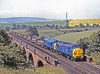 After a ceremony at Lackenby at which 37078 was named TEESSIDE STEELMASTER, it is paired with equally clean 37096 to power a specially delayed Dalzell or Workington service on American Independence Day 1984. Seen here crossing Relly Mill Viaduct, Durham at about 11.00. <br />  <br /> Ah, me…………………actually only 32 years ago.