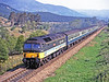 For only a very short period in 1990 the Edinburgh to Glasgow push-pull 47/7s were deployed on the Highland before moving south to help out the struggling 50s on the Waterloo to Exeter line. This is the last one, 47717, hurrying an Inverness to Glasgow train south near Ralia. I was quite a way up a tree and the driver seems to have noticed me. It was not a very firm tree and I was swaying about! 28th may 1990.