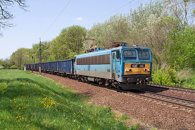 630 144 eastbound at Szöny with coal in PKP bogie wagons. Friday 26th April 2013.