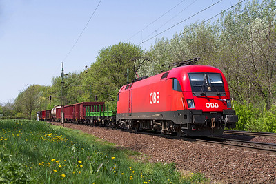OBB 1116 013 heads a mixed freight eastbound at Szöny. Friday 26th April 2013.