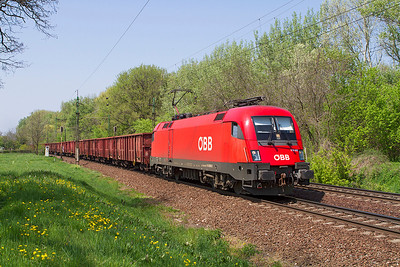 OBB 1116 008 allocated to RCH-MAV Cargo heads east at Szöny with bogie open wagons. Thursday 25th April 2013.