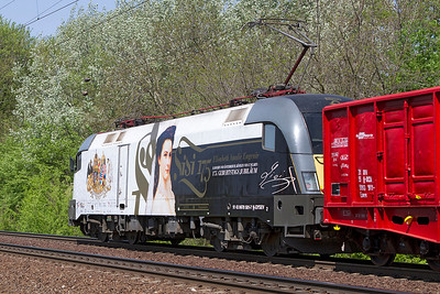 GySEV 470 501 with decals for 175 Anniversary of Queen Elisabeth heads a tank train westbound at Szöny. Friday 26th April 2013.