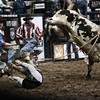 "PRCA bull riding...a short ride followed by an abrupt ""get off.""  National Western Stockshow, Denver, CO."