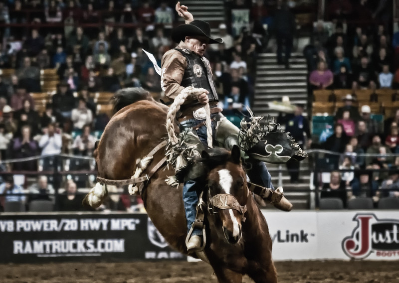 Bronc Bustin' the way it was meant to be done, gives the fans a reason to cheer at the National Western Stockshow, Denver, CO.